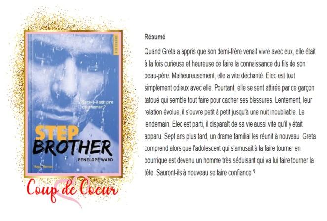 Step Brother avis